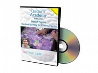 Quilter's Academy - David Taylor Machine Quilting for Pictorial Quilts (DVD)